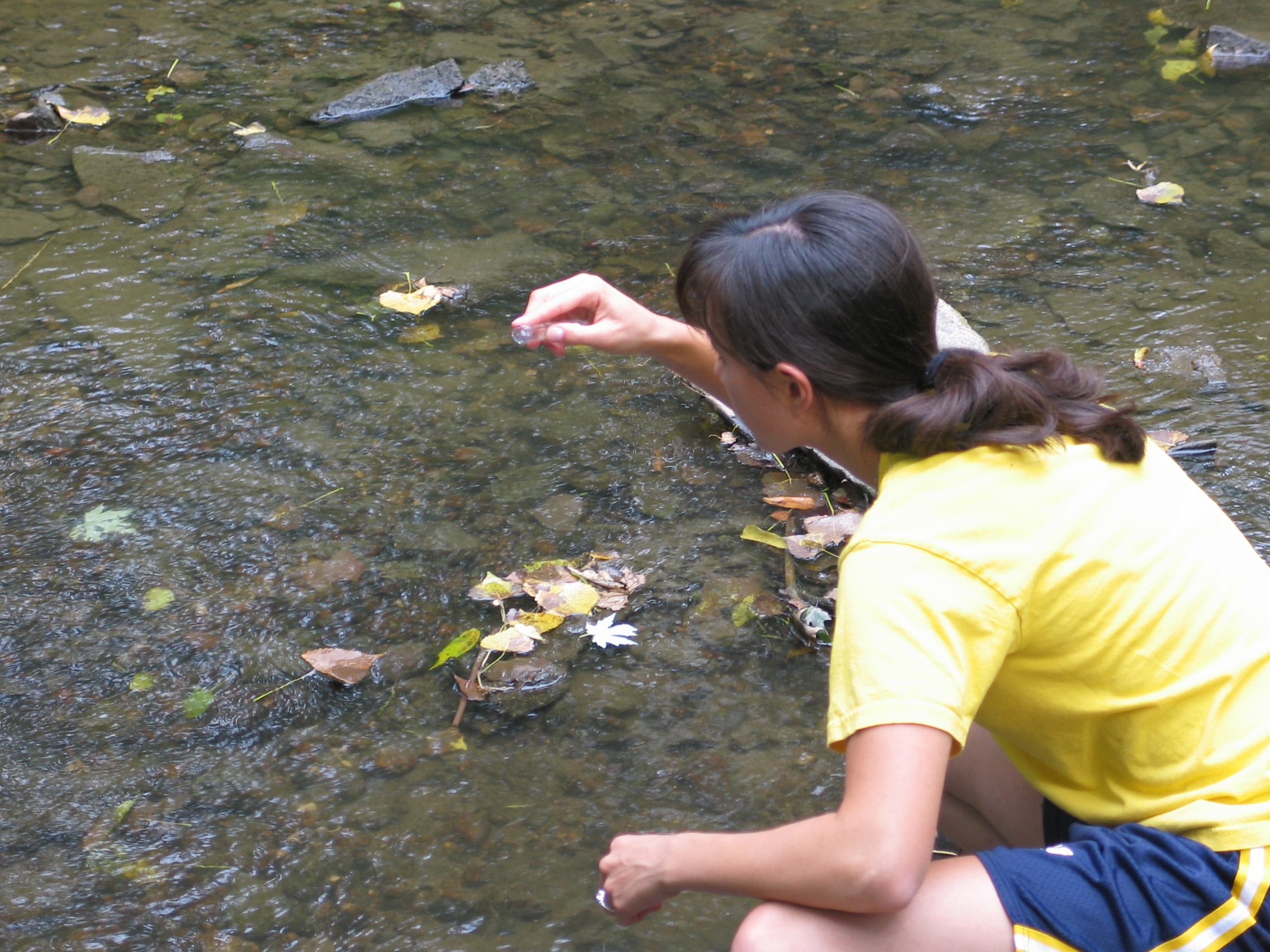 A researcher crouched down in a shallow freshwater stream. They're taking a sample of the water.