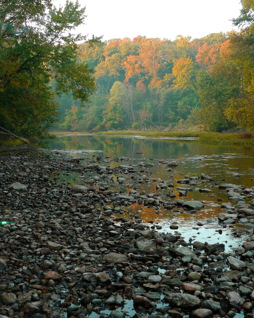 A beautiful view of a rocky river shore. Trees can be seen in the distance on the opposite shore, their leaves gradually changing from green to orange.